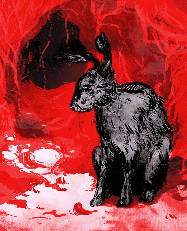 Illus Watershipdown